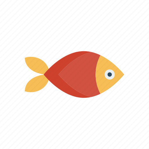 fish, seafood, shark, water icon