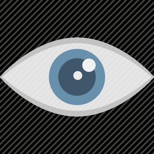 biometric recognition, eye scanning, iris scan, retina scanner icon