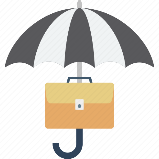 business protection, business security, financial security, information security icon