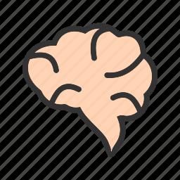 body, brain, cerebellum, head, human, mind, organ icon