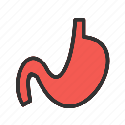 constipation, digestion, human, medical, organ, pain, stomach icon