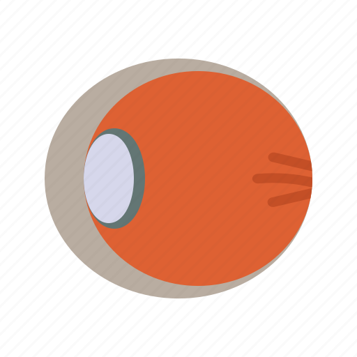 human, macula, nerve, optic, retina, sight, vision icon