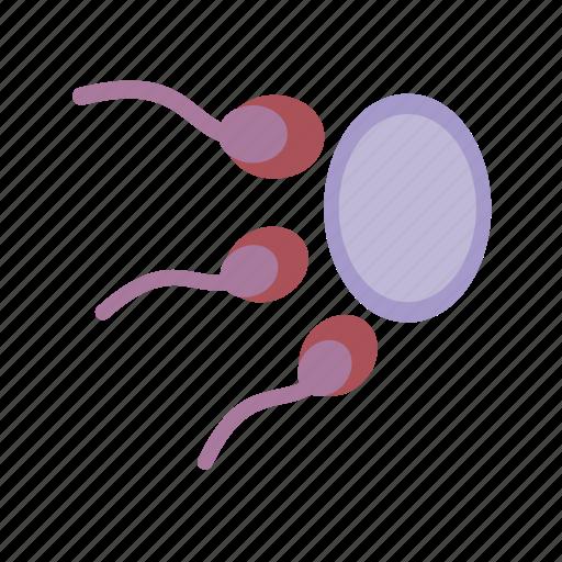 cell, fertility, fertilization, human, life, sperm icon
