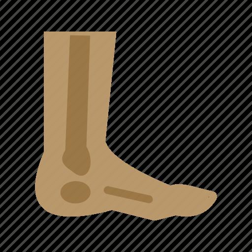 body, feet, fingers, foot, health, nails, toe icon