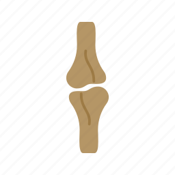 arthritis, bone, healthy, human, joint, knee, pain icon