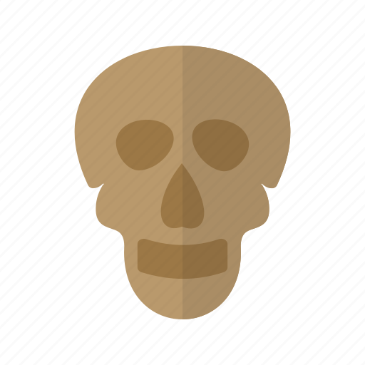 face, head, human, medical, skeleton, skull icon