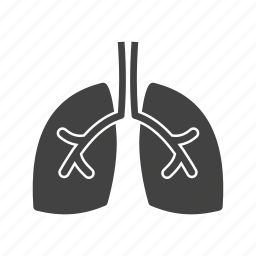 breathe, bronchi, chest, healthy, lungs, pulmonary, respiration icon