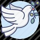 peace, dove, freedom, charity