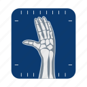 anatomy, bone, hand, human, medicine, organ, x-ray icon
