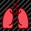 breath, human, lungs, organ, oxygen icon