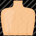 back, human, dorsal, body, vertebrate, neck, shoulder