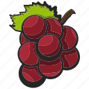 fruit, grapes, icon, illustration, vector icon