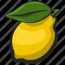 fruit, icon, illustration, lemon, vector icon