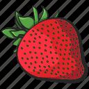 fruit, icon, illustration, strawberry, vector icon