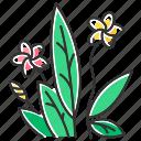 exotic, flower, frangipani, indonesian, plant, plumeria, tropical icon