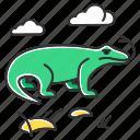 animal, dragon, komodo, lizard, tropical, varan, wildlife