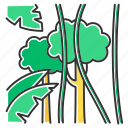 exotic, forest, jungle, liana, rainforest, tropical, wood