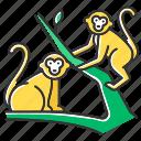 animal, jungle, macaque, monkey, primate, tropical, wildlife