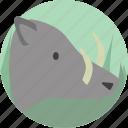 animal, boar, mammal, wild icon