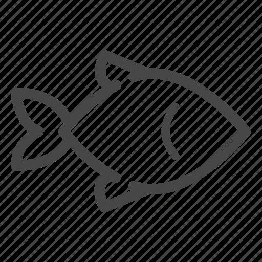 aquarium, bass, fish, food, ingredient, meal, seafood icon