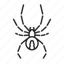 animal, bug, bugs, creature, insect, widow spider icon