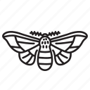 animal, bug, bugs, creature, insect, moth icon