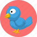 animal, animals, bird, pet icon