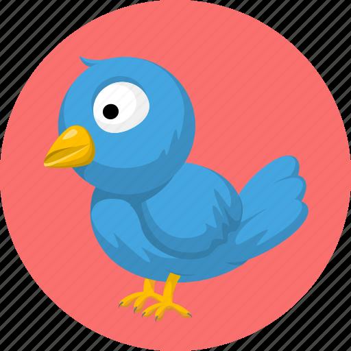 animal, animals, bird, pet icon