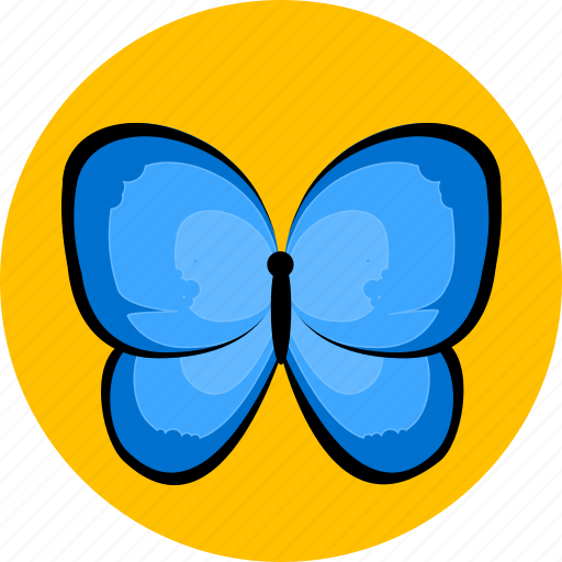 beetle, butterfly, insect, spider icon