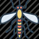 bite, bloodsucking, disease, epidemic, gnat, insect, mosquito
