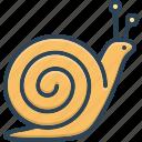insect, snail, conch, scrimshaw, marine, concha, gastropod icon