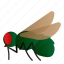 bluebottle, bug, fly, insect icon