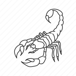 arachnid, bug, insect, poisonous insect, scorpion, scorpione, sting icon