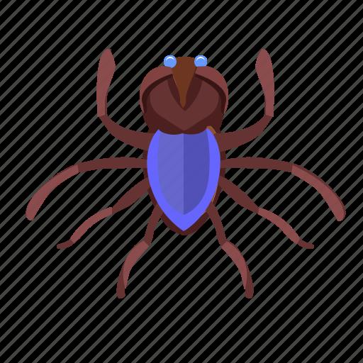 beetle, bug, insector icon
