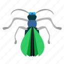 bug, fly, insector, mosquito icon