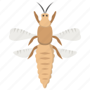 bees, bumble bee, flying insect, honey bee, insect icon