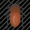 bed bug, beetle, insect, ladybug, shield bug icon