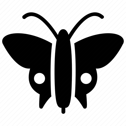 butterfly, insect, lepidoptera, monarch butterfly, pest insect icon