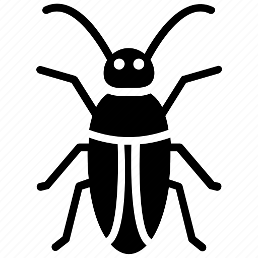 beetle, blattaria, bug, cockroach, insect icon