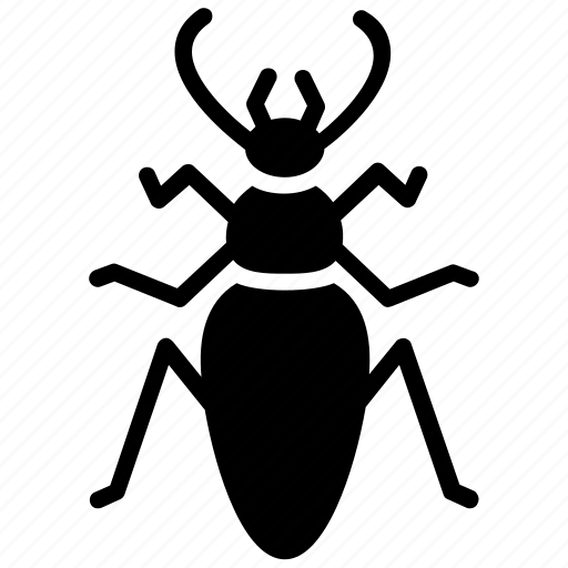 dung beetle, ground beetle, insect, prejudicial insect, scarab beetle icon