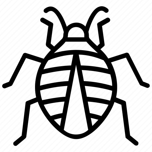 beetle, garden insect, insect, ladybug, pest insect icon