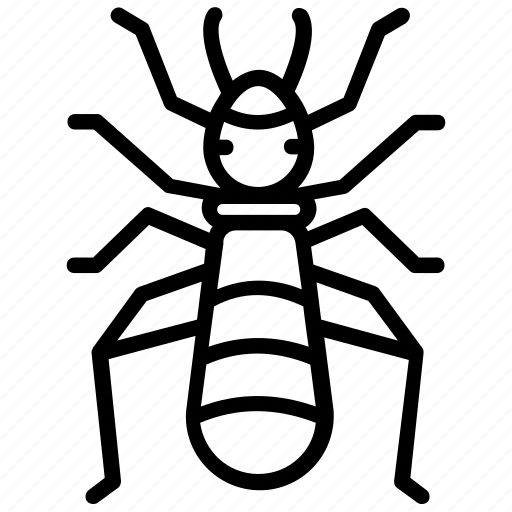 bed bugs, booklice, insect, pest insect, termites icon