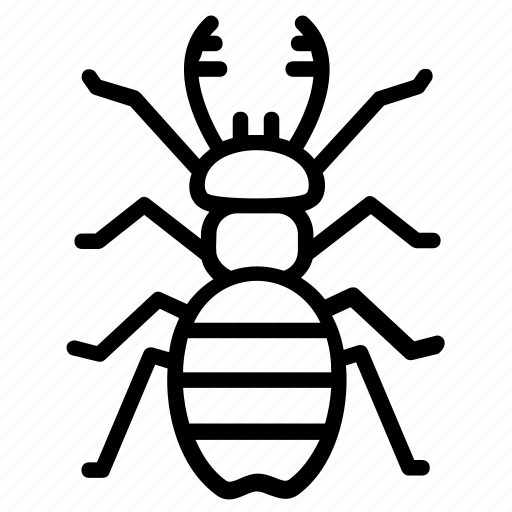 beetle dear, dung beetle, insect, prejudicial insect, scarab beetle icon