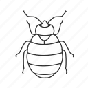 bed bug, bug, insect, parasite, parasitic insect, pest icon