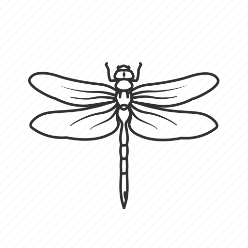 bug, damselfly, dragonfly, flying bug, flying insect, insect, pest icon