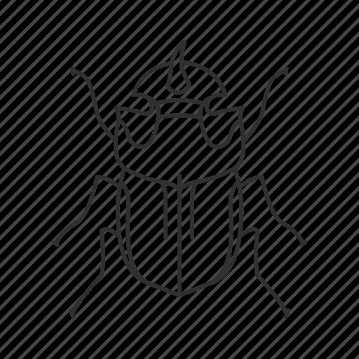 beetle, bug, common beetle, dung beetle, hercules, insect icon