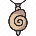 limax, slug, snail icon