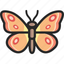 butterfly, monarch, swallowtail icon