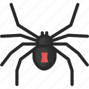 black widow, redback, spider icon