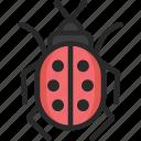 insect, ladybird, ladybug icon